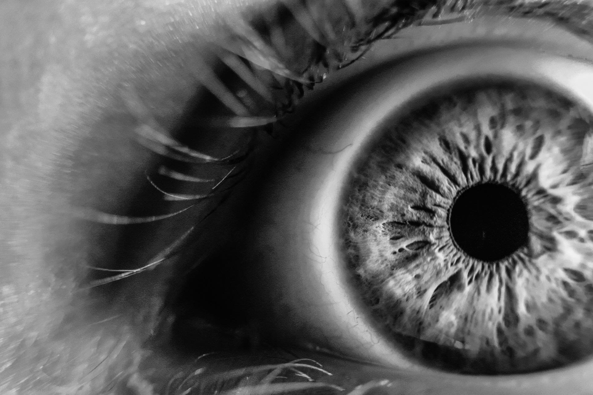 blind_oko.jpeg